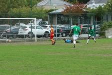 U21_Zele016
