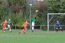 U21_zele168